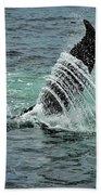 Bending The Water Beach Towel by Andrea Platt