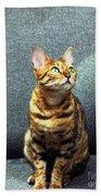 Bengal Cat Oil Pastel  Beach Towel