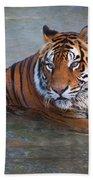 Bengal Tiger Laying Water Beach Towel