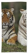 Bengal Tiger Team Beach Towel