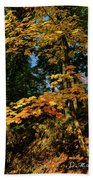Bernharts Dam 15-126 Beach Towel