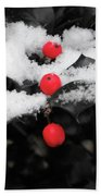 Berries In Snow Beach Towel