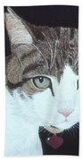 Best Cat Beach Towel