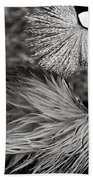 Best Feathers Ever Beach Towel
