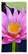 Beyond Beautiful Water Lily 2 Beach Towel