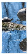 Bff Turtle And Canda Goose Beach Towel