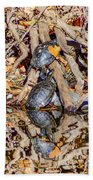 Bidwell Turtles In Fall Beach Towel