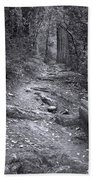 Big Basin Redwoods Sp 1 Beach Towel