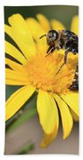 Big Bee On Yellow Daisy Beach Sheet