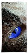 Big Blue Eyes Cat Beach Towel