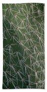 Big Cactus Pins. Close-up Beach Sheet
