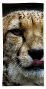 Big Cats 53 Beach Towel