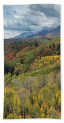 Big Cottonwood Canyon Fall Colors Beach Towel