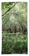 Big Cypress Preserve Beach Towel