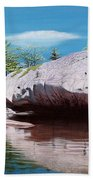 Big River Rock Beach Towel
