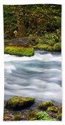 Big Spring Branch Beach Towel