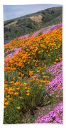 Big Sur Spring Beach Towel