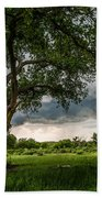 Big Tree - Tall Cottonwood And Storm In Texas Panhandle Beach Towel