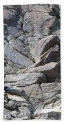 Bighorns Romantic Stare Beach Towel