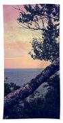 Birch At The Overlook Beach Towel