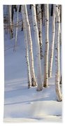 Birch Trees In The Snow, South Beach Towel