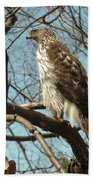 Birched Cooper 2 Beach Towel