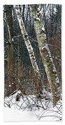 Birches During A Snowfall Beach Towel