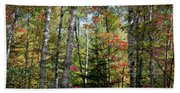 Birches In Fall Forest Beach Sheet