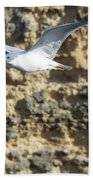 Bird In Flight Beach Towel