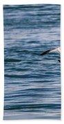 Bird In Flight Over Water Beach Towel