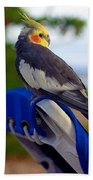 Bird In Paradise Beach Towel