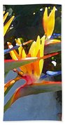 Bird Of Paradise Backlit By Sun Beach Towel