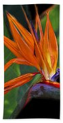 Bird Of Paradise Digital Art Beach Towel