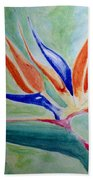 Bird Of Paradise, Noon Beach Towel