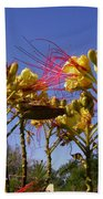 Bird Of Paradise Shrub Beach Towel