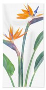 Bird Of Paradize Flowers Beach Towel