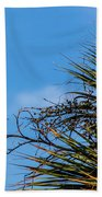 Bird On A Palm Branch Beach Towel