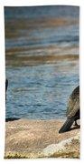 Birds And Lake Beach Towel