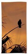 Birds Eye View Photograph Beach Towel