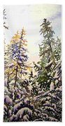 Birds Hill Park One Late Afternoon In January Beach Towel