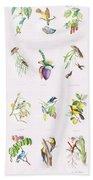 Birds Of Brazil Beach Towel