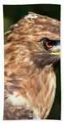 Birds Of Prey Series 5 Beach Towel