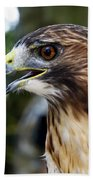 Birds Of Prey Series Beach Towel