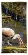 Birds Of The Everglades Beach Towel