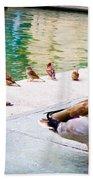 Birds Of The River Beach Towel