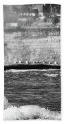 Birds On A Log Beach Towel
