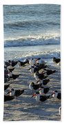 Birds On The Beach Beach Towel