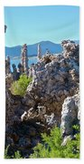 Birds On Tufa Towers-mono Lake Beach Towel
