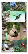 Birdsong Nature Center Collage Beach Towel