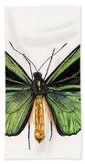 Birdwing Butterfly Beach Towel